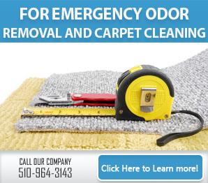 Blog | Common Causes of Carpet Trouble