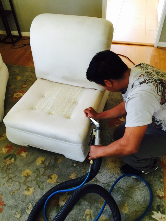 Upholstery Cleaning in Albany